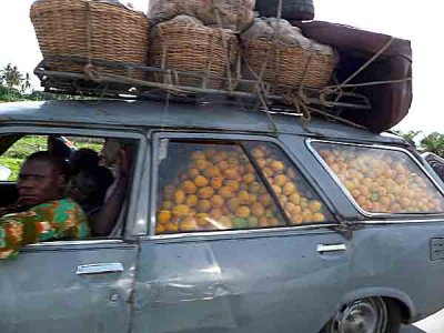 Transport of oranges.