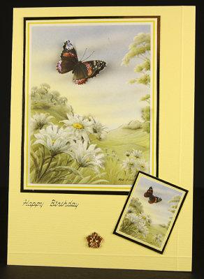 Butterfly Vista