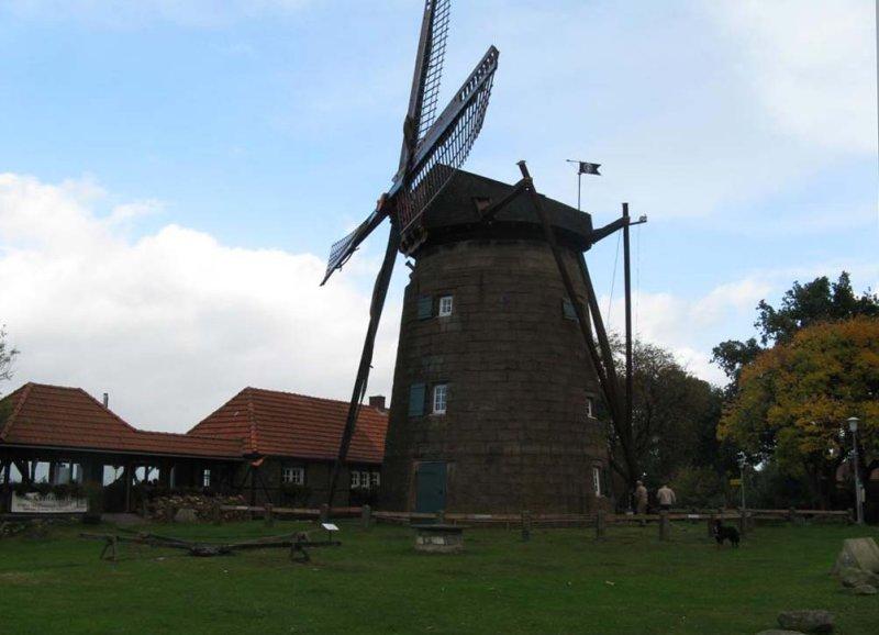 De molen op de Muhlenberg in Gildehaus (Ost - Mühle)