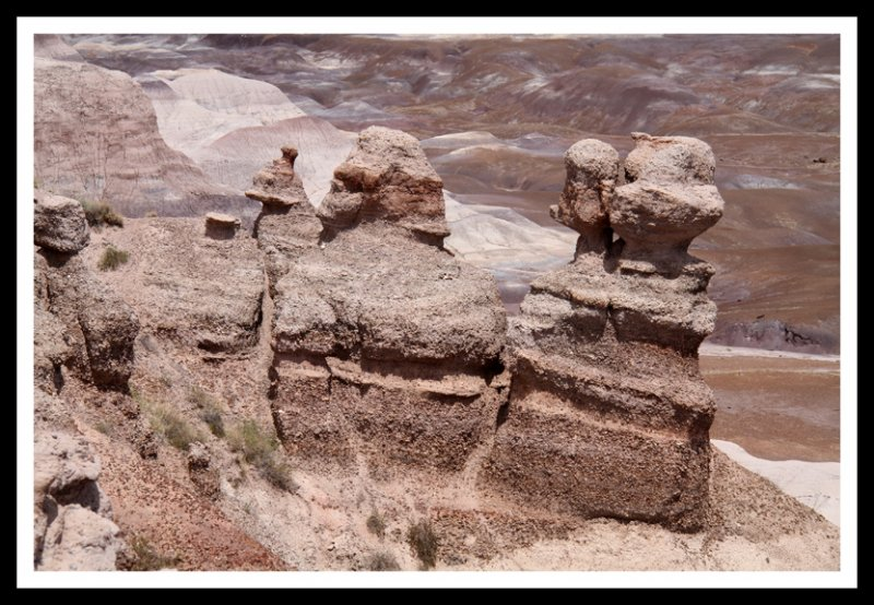 Figures Watching the Petrified Forest