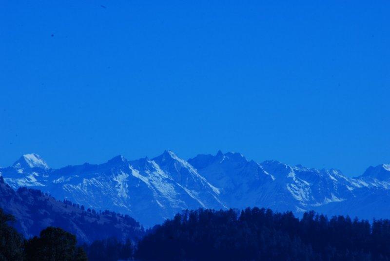 www.shyamprasadphotography.com