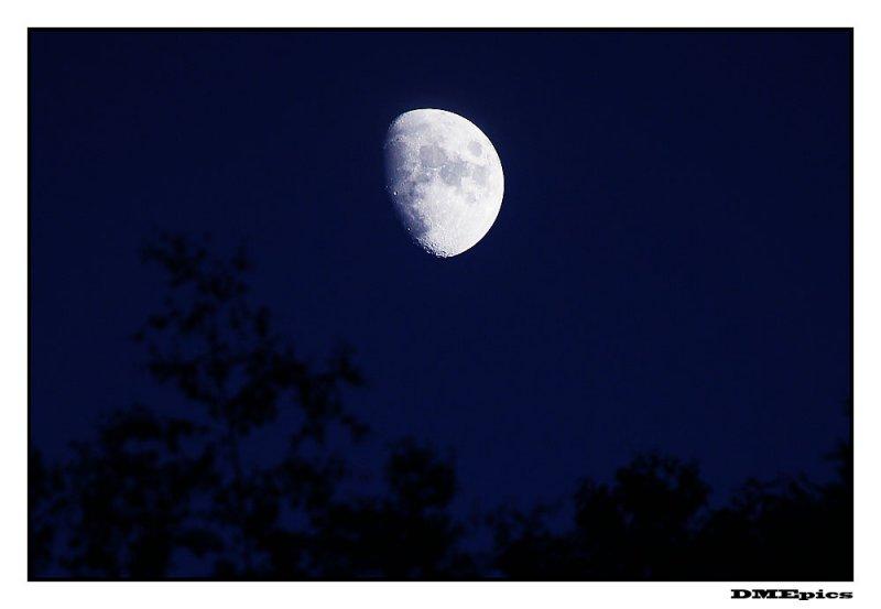 moon_7183.jpg