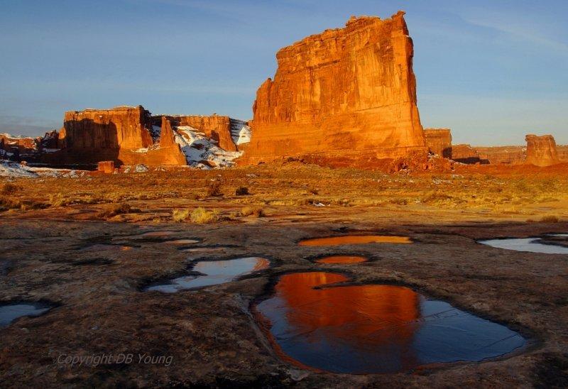 February in the desert