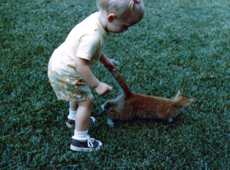Here, kitty, kitty...