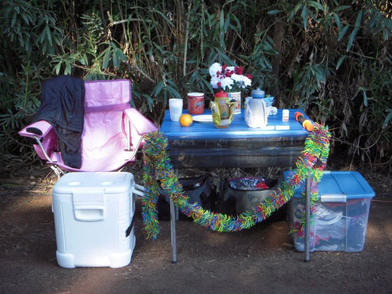 My and Tims incredible aid station spread