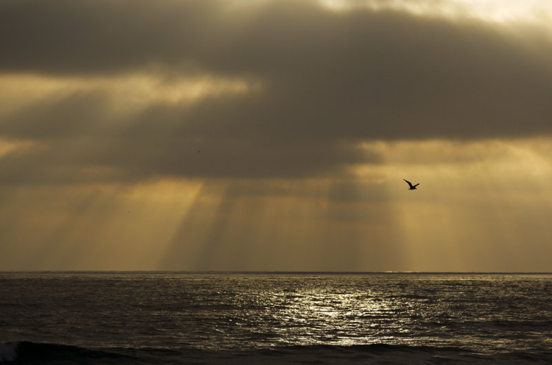 Storm over the Pacific, Mission Beach, San Diego, California, 2010