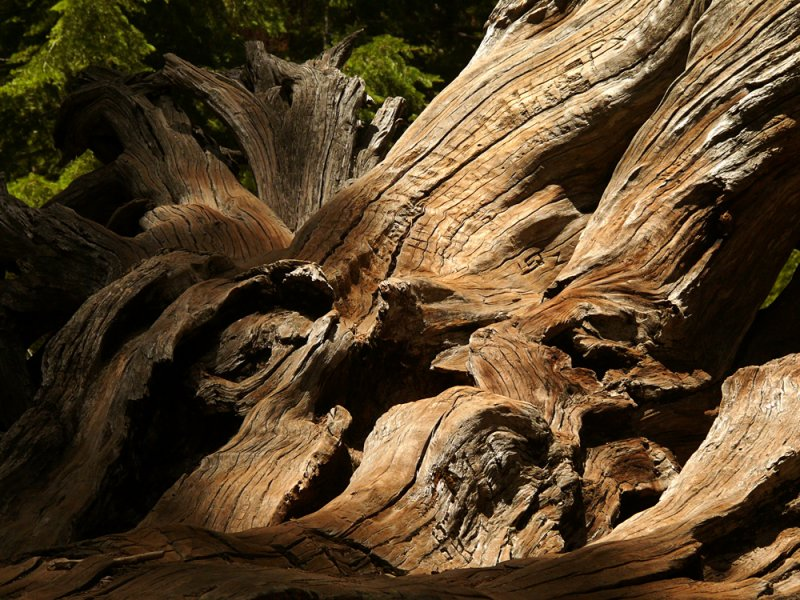 Faded inscriptions, Yosemite National Park, California, 2008