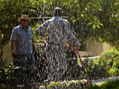 Sprinkler, Scottsdale, Arizona, 2008