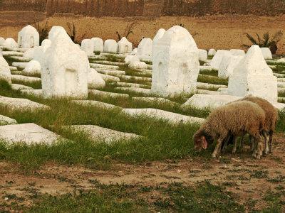 Cemetery, Kairouan, Tunisia, 2008