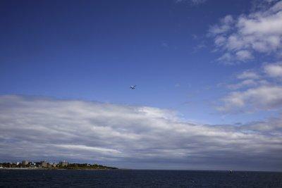Flight, Victoria, British Columbia, Canada, 2009