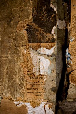 Insulation, Bannack, Montana, 2010