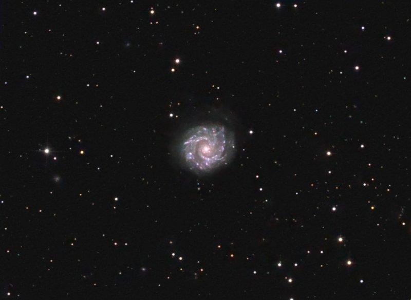 NGC 3631 (Arp 27)