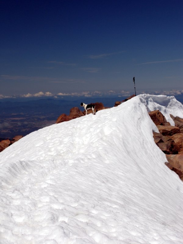 Kelly on Mt McLoughlin 9495 ft summit 7-3-2010