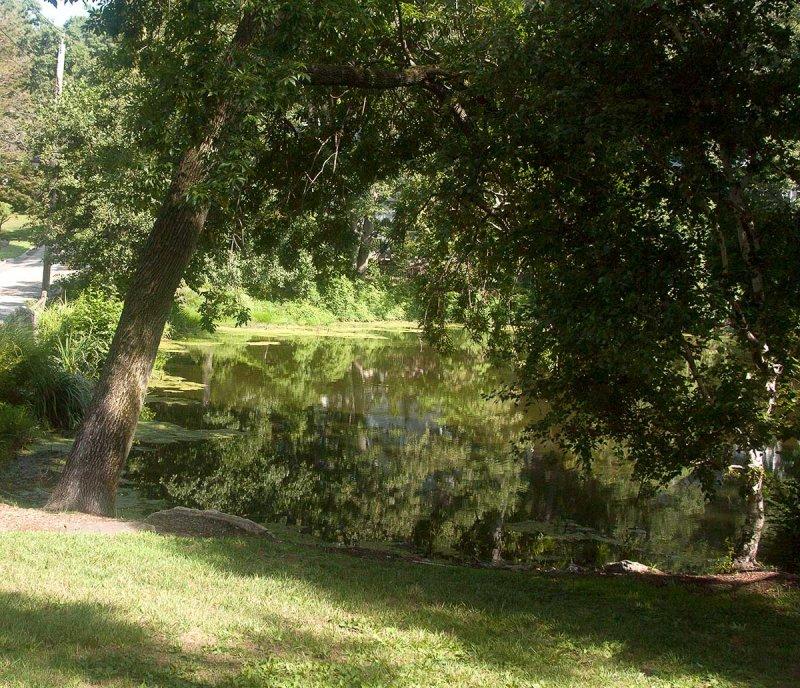 Phillips Manor Pond