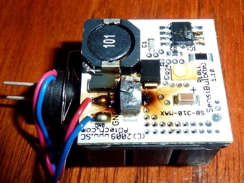 Z-CROP-P1050986.jpg
