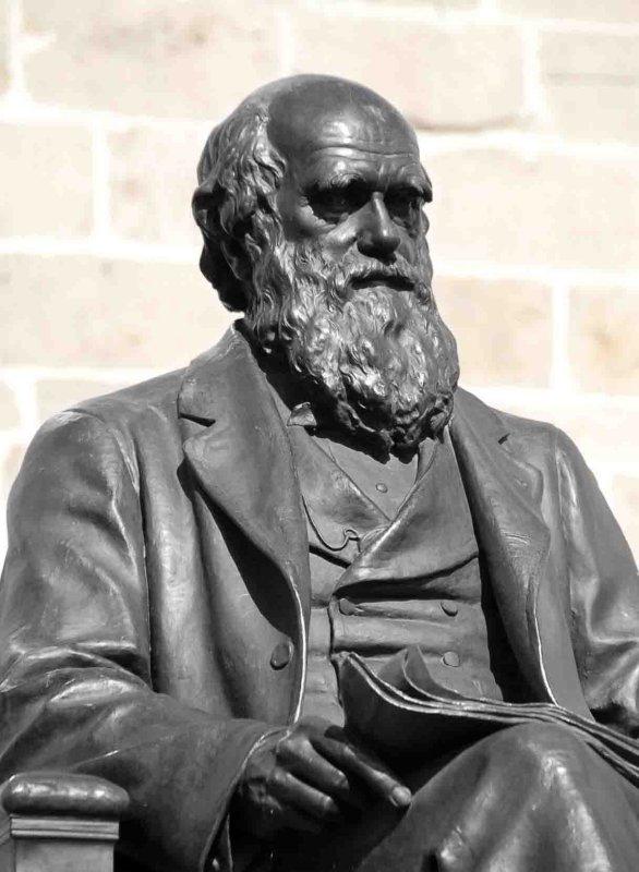 Charles Darwin v.2