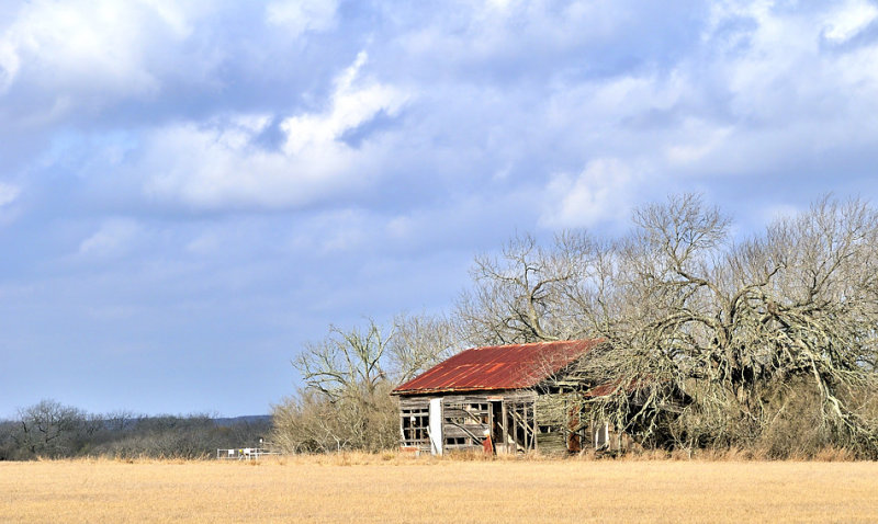 Atascosa County: FM 2924