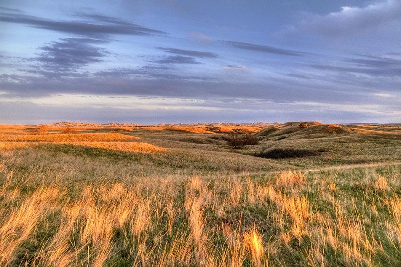 _APR3044_Buffalo Gap Grasslands