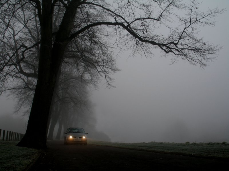 car  in the fog.