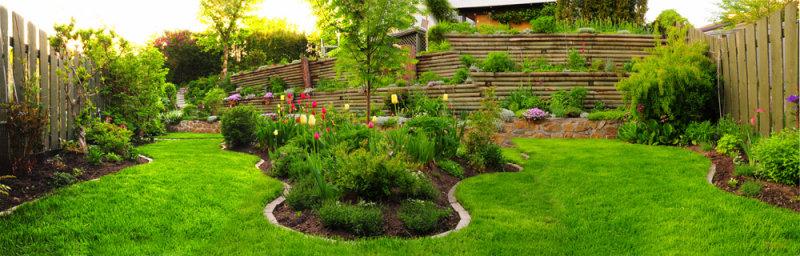 Dars garden.jpg