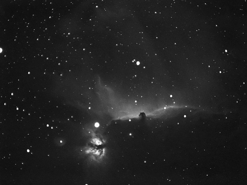 HORSEHEAD THROUGH HA FILTER