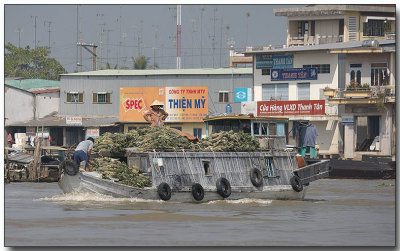 Transporting Fruit - Floating Market