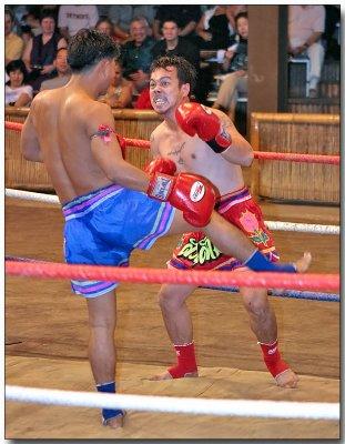 Thai Martial Arts - Muay Thai kick boxing