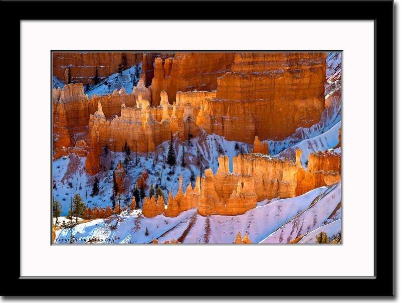 Bryce Canyon in Winter