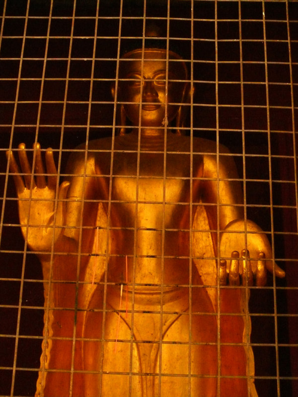 In a golden cage.jpg