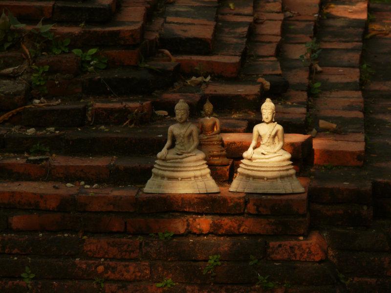 Small buddha statues.jpg