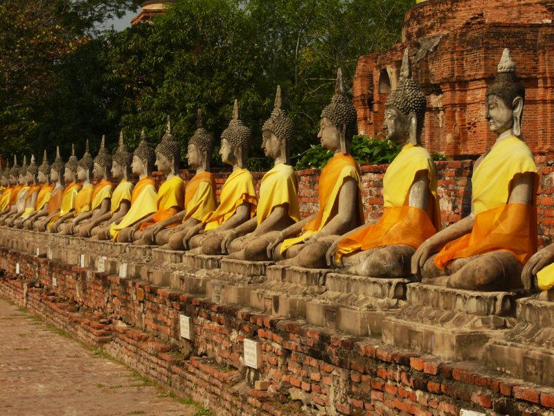 Yellow clad buddhas Ayuthaya.jpg