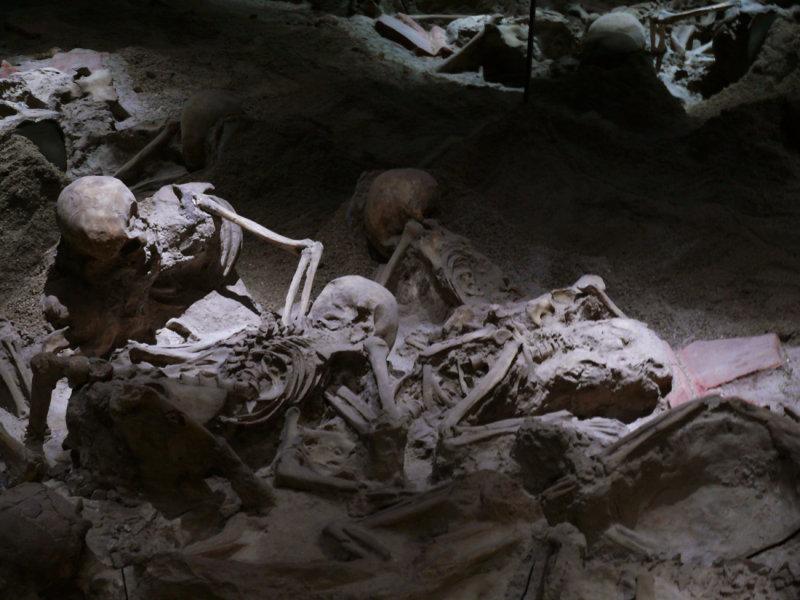 Bodies of Pompei web.jpg