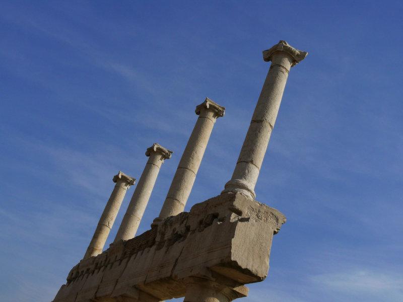 Reaching for the sky - Pompei web.jpg