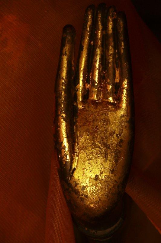 Buddha hand.jpg