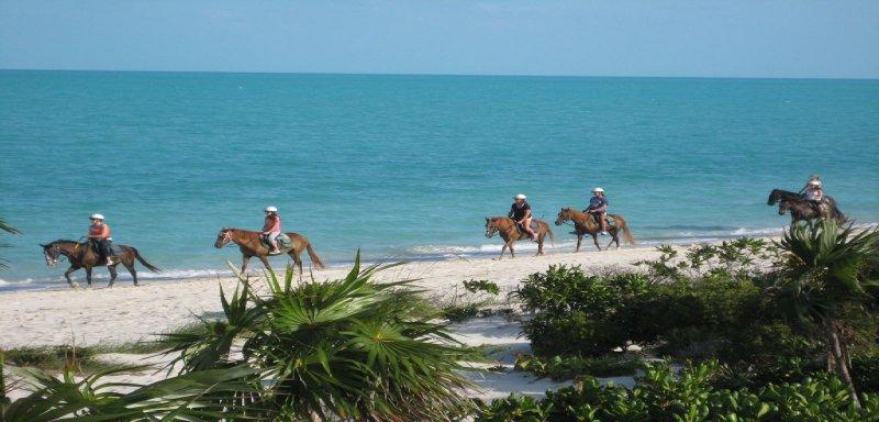 Long bay beach horseback riders