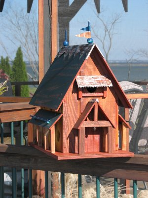 The first Martin House, replacing our commercially made one that blew down in the wind