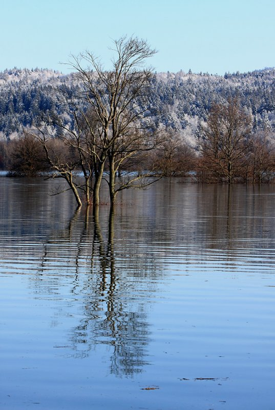 flood on Planinsko polje