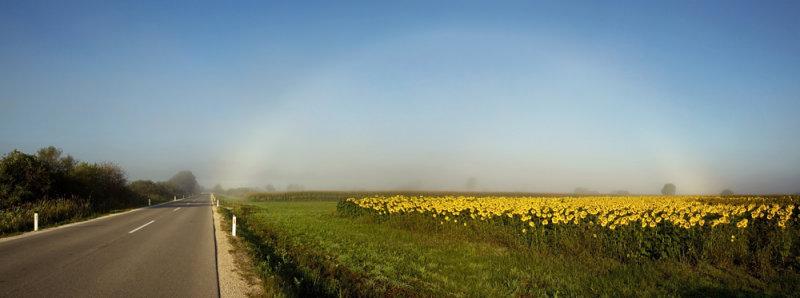 Fogbow (Panorama 7m.jpg)
