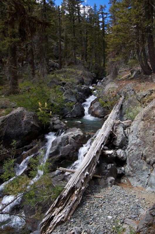 creek near the trailhead