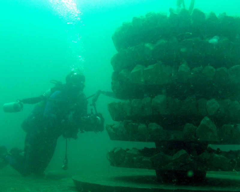 New Ecosystem artificial reef
