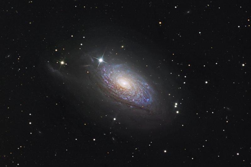 Sunflower Galaxy, M63- Closeup