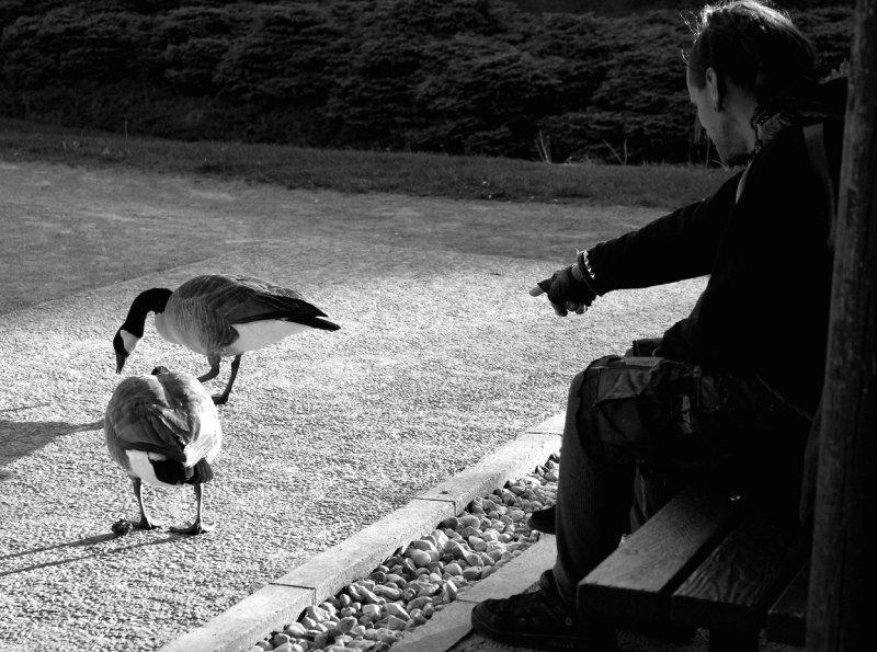 À la Henri Cartier-Bresson