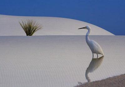 Breathtaking simplicity...
