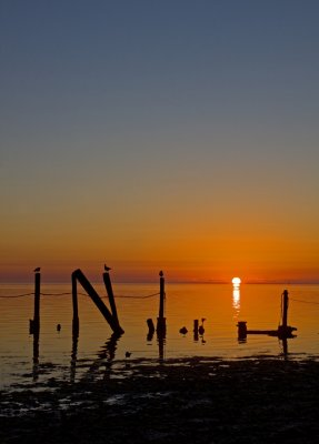 Copano Sunrise (INI)