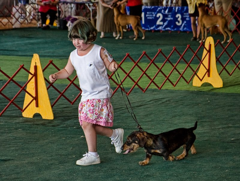_MG_4847  Very Junior Handler