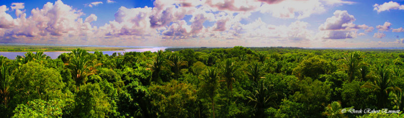 Mayan View of the World