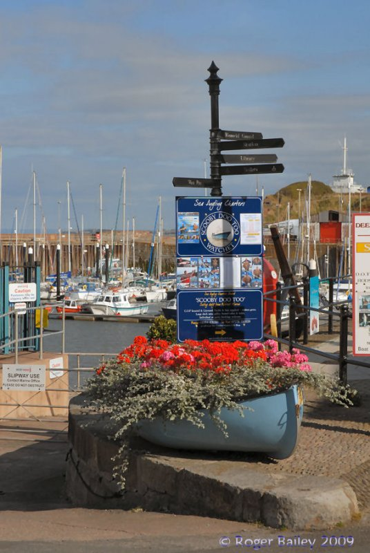 Signs to the Marina.