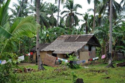 Thatched hut out near El Nido Airport, Palawan