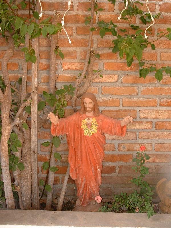 Caa Negrete Tijuana, MEX