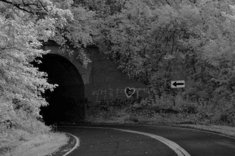 Marine Tunnel Crop 0648.jpg